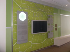RIT Leadership Wall and healthcare decision point